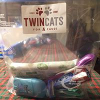 twincats2.jpg